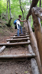 Scale pineta itinerario San Fele