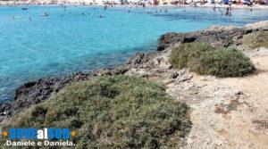 Scogli e dune spiaggia della Torretta