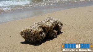 Sabbia dorata di Posto Vecchio