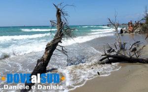 Spiaggia incontaminata Lido Pineta Ugento
