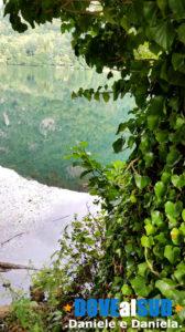 Vegetazione Laghi di Monticchio