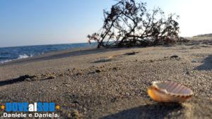 Mare di Pisticci