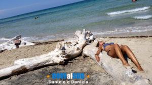 Spiaggia di Torre Guaceto con natura