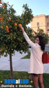 Alberi ornamentali mandarini selvatici