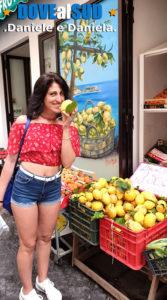 Limoni di Amalfi e Costiera Amalfitana